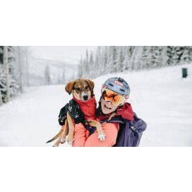 How to ski with your Dog
