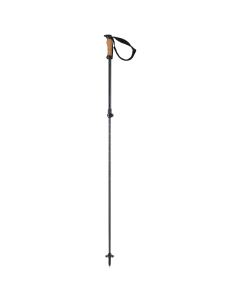 Voyager Rod